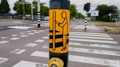 Житомиряни просять, щоб світлофори були обладнані кнопками виклику