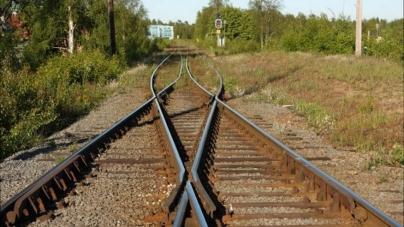 Містяни збирають підписи, щоб збільшити кількість потягів через Житомир