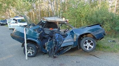 Малинський район: у ДТП загинули 22-річна дружина та теща водія автівки