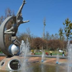 Житомиряни скаржаться, що біля фонтану «Космонавт» бігають щури