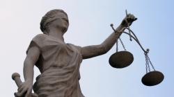 Житомирщина: держлісгоспу доведеться сплатити двом сільрадам 300 000 гривень за зрізані дуби