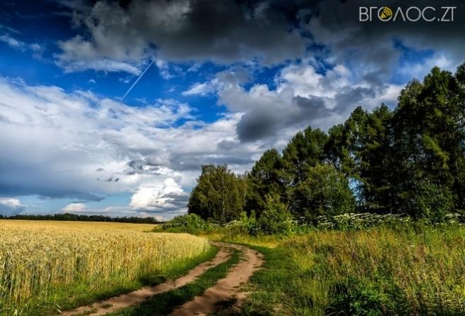 У Коростенському районі сільськогосподарське підприємство самовільно захопило 80 гектарів угідь
