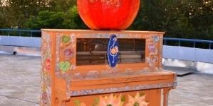 У Житомирі відбувся «зірковий» концерт до Дня народження Володимира Шинкарука (ФОТО)