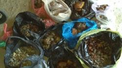 Бурштин на п'ять мільйонів гривень вилучили у групи «скупників» (ФОТО)