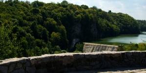 Чагарники закривають чарівні краєвиди: житомиряни просять навести лад на оглядових майданчиках