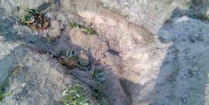 Житель Малинського району знайшов скелет солдата