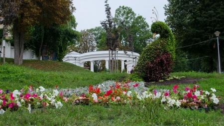 Скульптуру у вигляді Жар-Птиці вже вдруге за рік засадили квітами (ФОТО)
