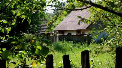 Ємільчинський район: село, яке залишилося безлюдним (ФОТО)