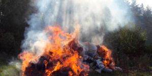 У Житомирі поліцейські знищили майже 60 кілограм сухих конопель і макової соломки