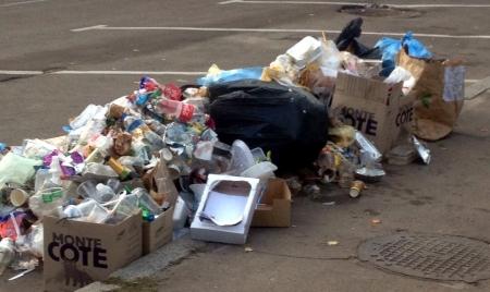 Жителі району Королівської Бочки скаржаться, що потопають у смітті