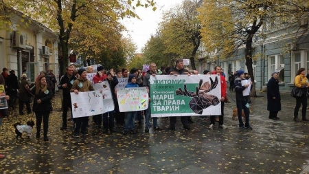 Житомиряни пройшли маршем за права тварин (ФОТО)
