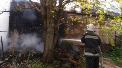 У Малинському районі під час пожежі загинула 89-річна жінка