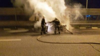 Брусилівський район: прямо на трасі вщент згорів автомобіль
