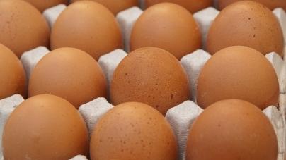 В ОДА «хваляться» стрімким ростом виробництва яєць