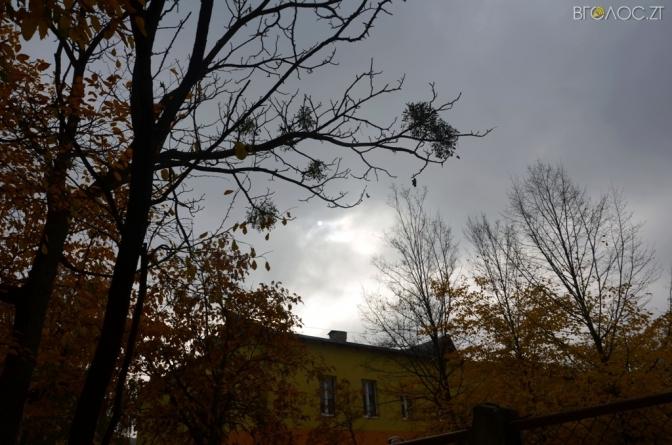 Синоптики розповіли, якою буде погода на Житомирщині 17 січня