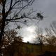 Якою буде погода на Житомирщині 30 жовтня