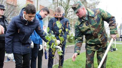 Як лісівники разом із школярами садили у Житомирі дерева (ФОТО)