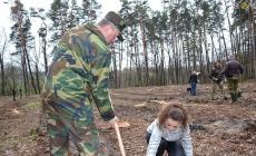 Житомирську райраду просять не допустити  реформування лісового господарства