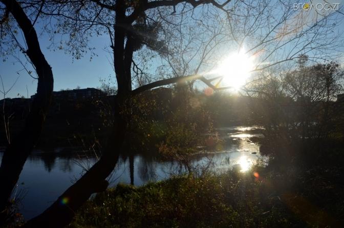 Тіло потопельника випадково «зачепили» у воді жителі Черняхова, які купалися у ставку