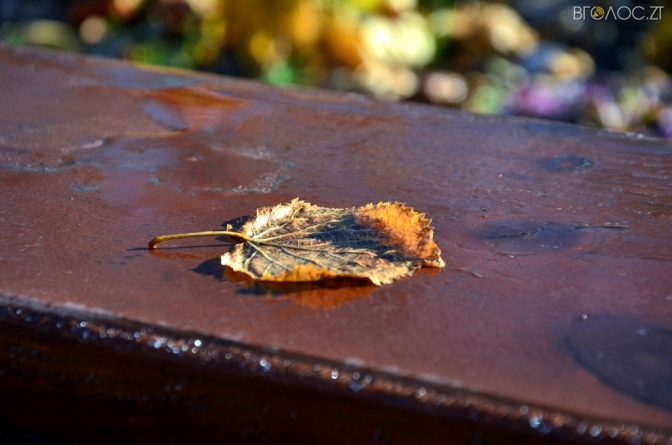 Синоптики розповіли, якою буде погода на Житомирщині 15 листопада