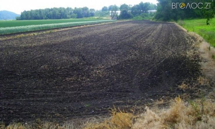 Понад 716 мільйонів за земельні «паї» сплатили фермери селянам області
