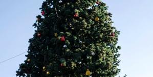 Олевська міськрада витратить майже 15 тисяч на монтаж новорічної ялинки