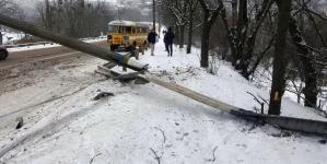 Житомир: на слизькому мосту автобус з людьми влетів у відбійник і збив електроопору (ФОТО)