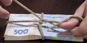 Депутата Олевської райради і голову сільської ради підозрюють у грошових махінаціях великих розмірів