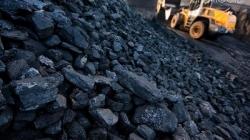 У Черняхівському районі придбають вугілля на 4,5 мільйонів для опалення шкіл