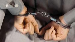 36-річну молдованку, яку розшукував Інтерпол за торгівлю людьми, затримали житомирські прикордонники