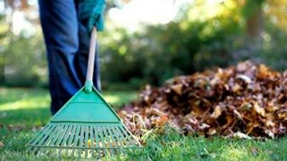З бюджету Житомира витратять понад 580 тисяч на прибирання скверів та парків