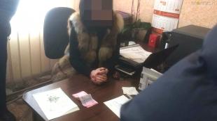 """У Бердичеві правоохоронці викрили працівницю міграційної служби, яка """"торгувала"""" закордонними біометричними паспортами"""