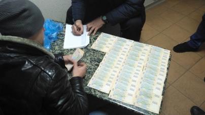 У Житомирі затримали директора державного підприємства та екс-правоохоронця на отриманні хабара