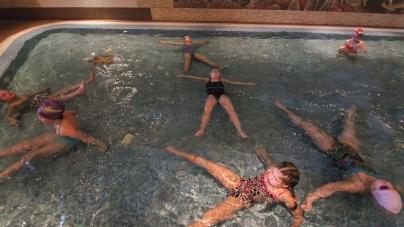За уроки плавання для школярів міськрада платитиме кошти дружині Сухомлина