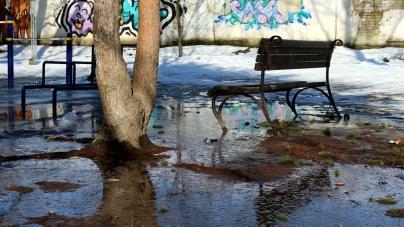 У Новограді парк після зими перетворився на суцільне болото (ФОТО)