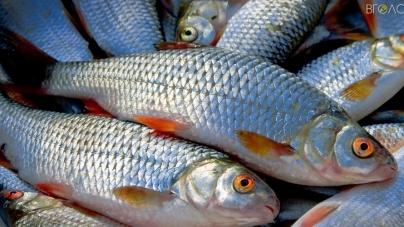 Гундич заборонив жителям області ловити рибу