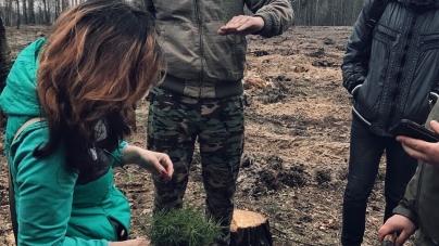 Студенти ЖНАЕУ з лісівниками садили ліс