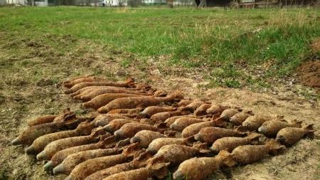 ОГО! Під Коростенем «мисливці» за металобрухтом знайшли 44 мінометні міни