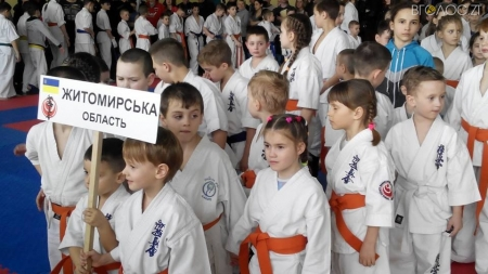 Майже 500 спортсменів взяли участь у чемпіонаті Житомирської області з кіокушин карате