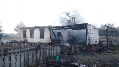 У Малинському районі у вогні загинули двоє маленьких дітей