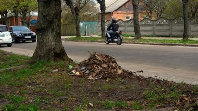 Житомиряни скаржаться, що місто потопає у смітті (ФОТО)