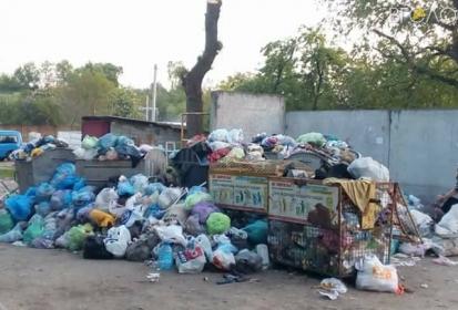 Житомир потопає у смітті: містяни поширюють «фотодокази» у соцмережах