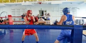 У Житомирі відбулося відкриття турніру з кікбоксингу пам'яті десантника 95-ї бригади