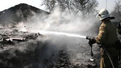 8 пожеж за добу: в області горіло сміття, сіно, поля, дрова, вулики