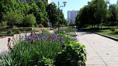 ФОТОекскурсія Житомиром: вулиця  Маликова та Польський бульвар