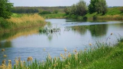 У річці Тетерів втопився 36-річний чоловік