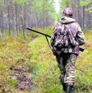 У Олевському районі лісництво відмовилося від понад 7 тисяч гектарів угідь