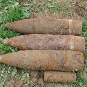 На Житомирщині жінка, яка збирала гриби, знайшла 14 мінометних мін та снаряд
