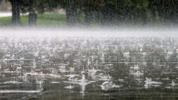 На Житомирщині знову прогнозують дощ