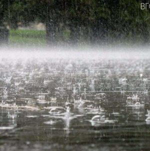 На Житомирщині місцями пройдуть дощі